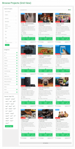 Browse Projects (Grid View)