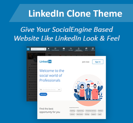 New Release: LinkedIn Clone Theme - Gives LinkedIn Look & Feel for Your Website!