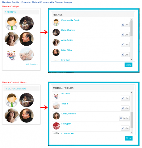 Member Profile: Friends / Mutual Friends with Circular Images